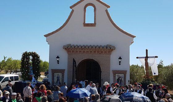 ¡¡Viva San Gregorio!! en casa